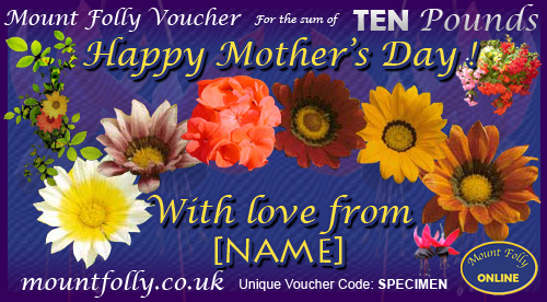 Happy Mother\'s Day Vouchers